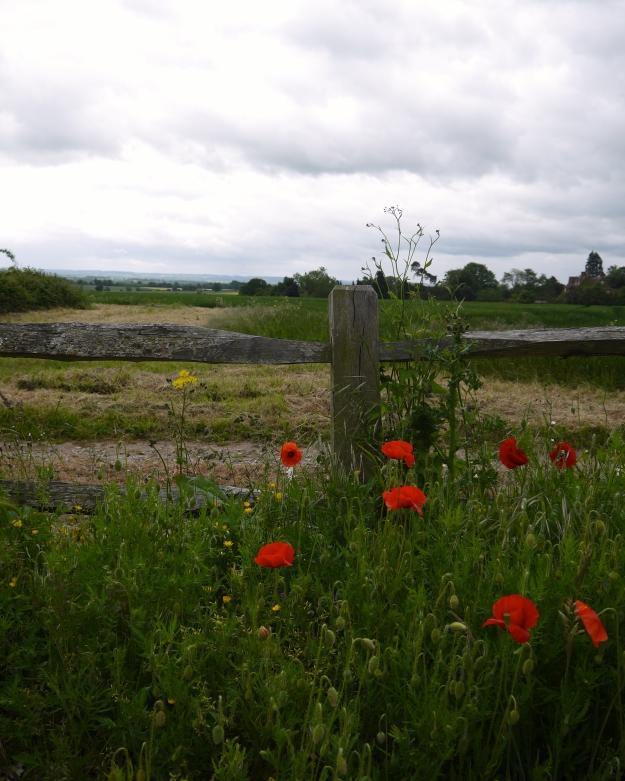 Idyllic Oxfordshire landscape