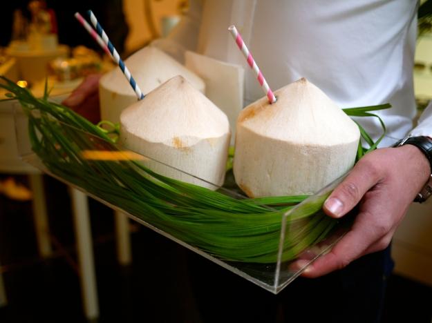 Kate Spade coconuts