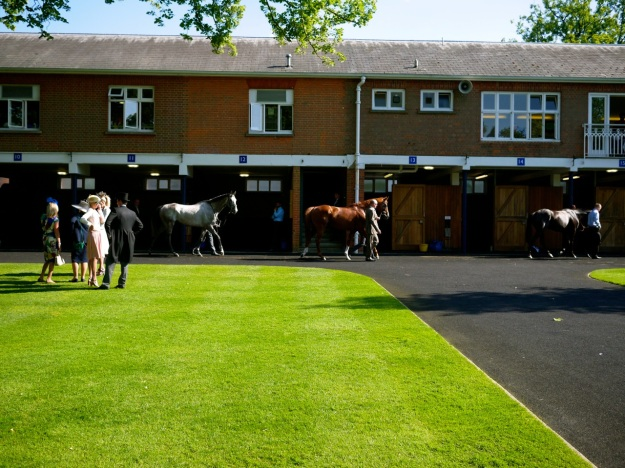 Royal Ascot Paddock Stables