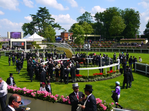 Royal Ascot Parade Ring View