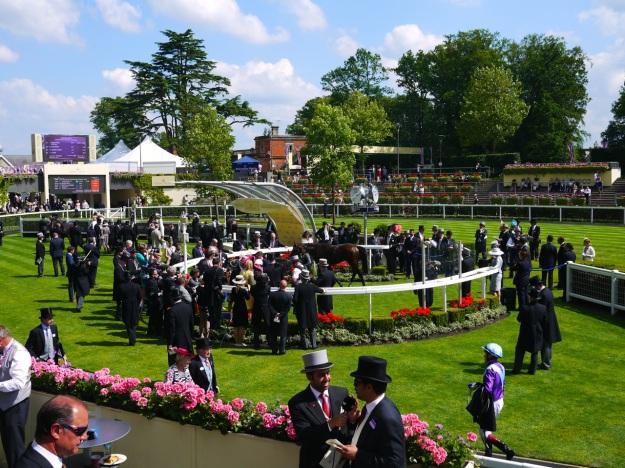 Royal Ascot Parade Ring View