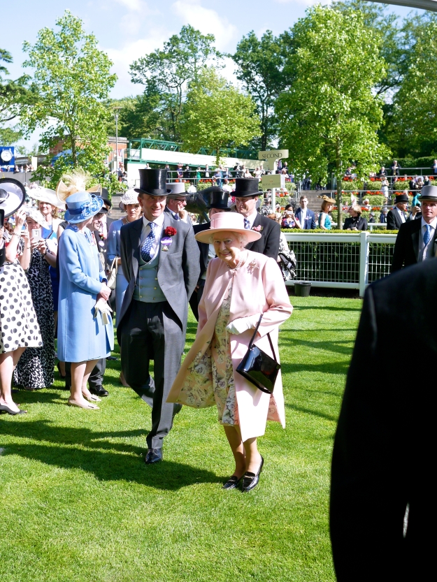 Royal Ascot Queen Pink