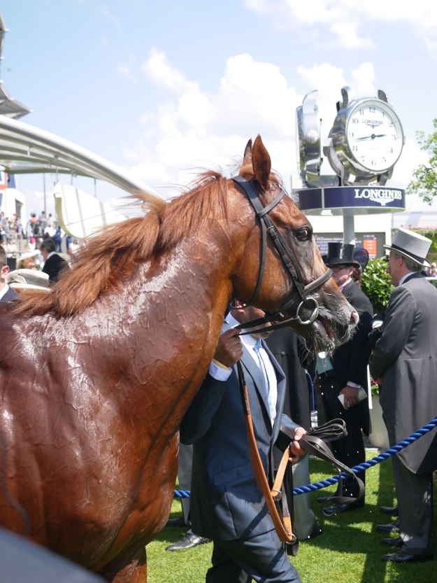 Royal Ascot Richard Pankhurst