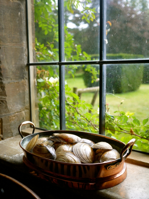 Broughton Castle Shells Window