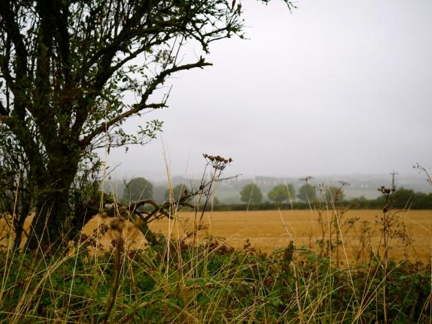 Cotswolds Rainy Landscape