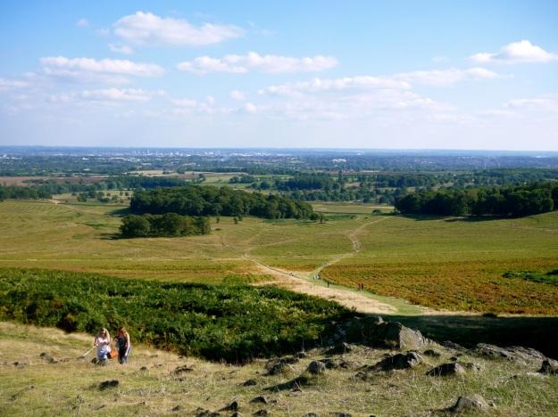 Liecester Hill
