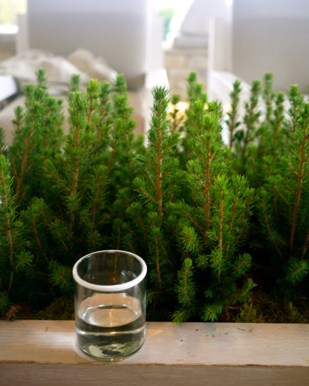 Daylesford Bamford Spa White Rimmed Water Glass