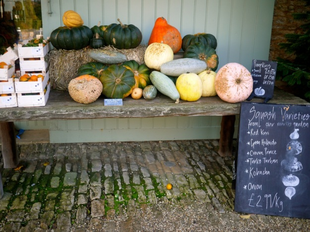 Daylesford Squash Table Display Varieties