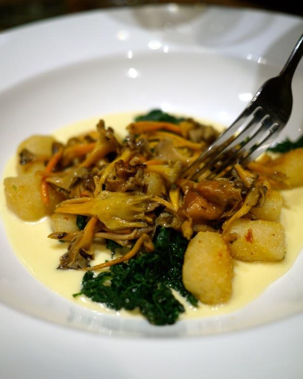 Gnocchi, cavolo nero, chanterelles, parmesan cream