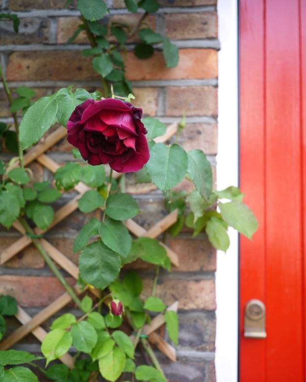 Mustow Place Parsons Green Rose Red Door