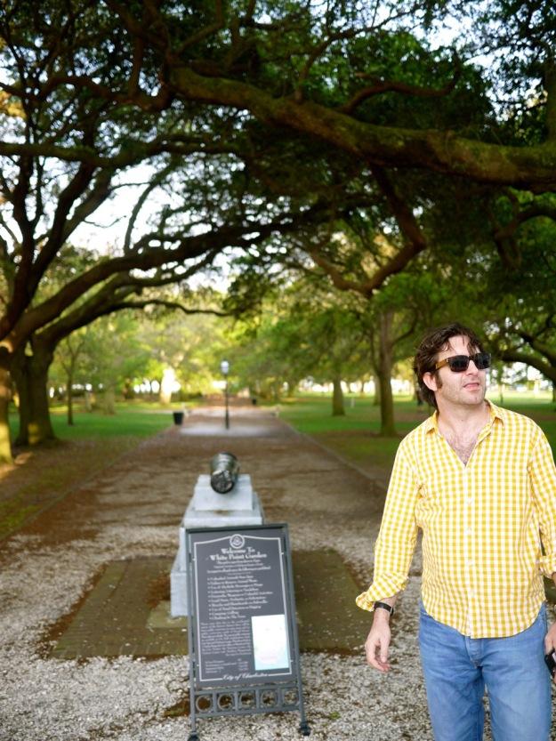 Charleston Peninsula Park Walk Trees
