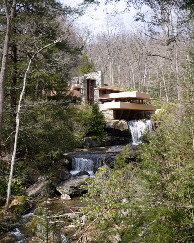 Fallingwater View
