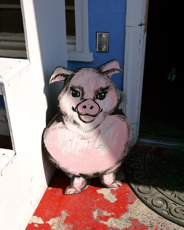 Winchester Virginia Bonnie Blue Pig Door