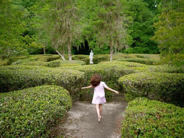 Magnolia Plantation Garden Maze