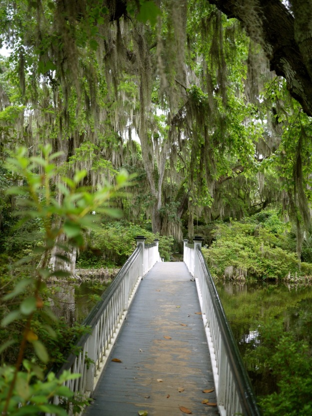 Magnolia Plantation Long White Bridge Path
