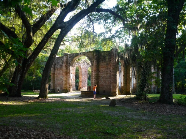 Old Sheldon Church Ruins Spanish Moss