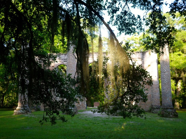 Old Sheldon Church Ruins Sunny Moss