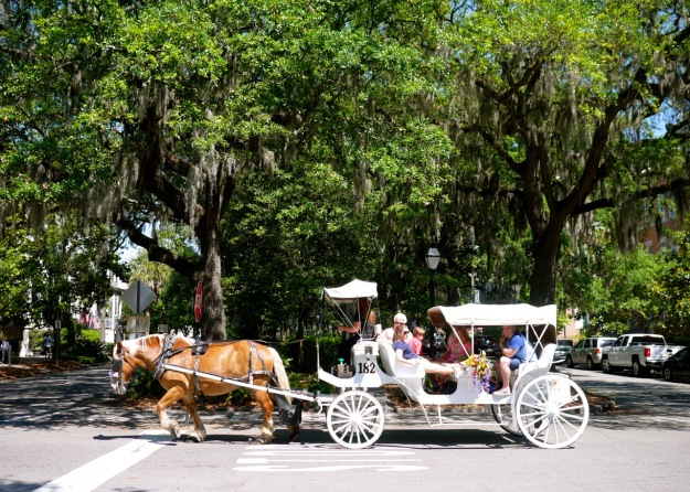 Savannah Horse Drawn Carriage