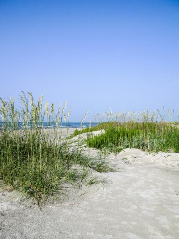 Sullivan's Island Boardwalk Beach Dunes Landscape