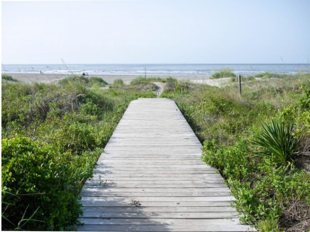 Sullivan's Island Boardwalk Beach path Landscape