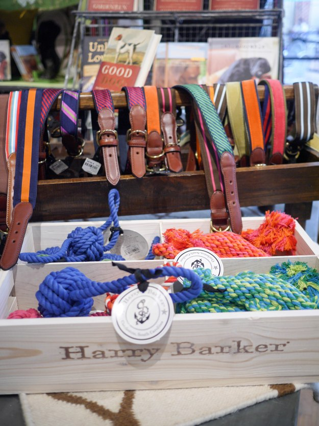 Charlottesville Caspari dog accessories collars