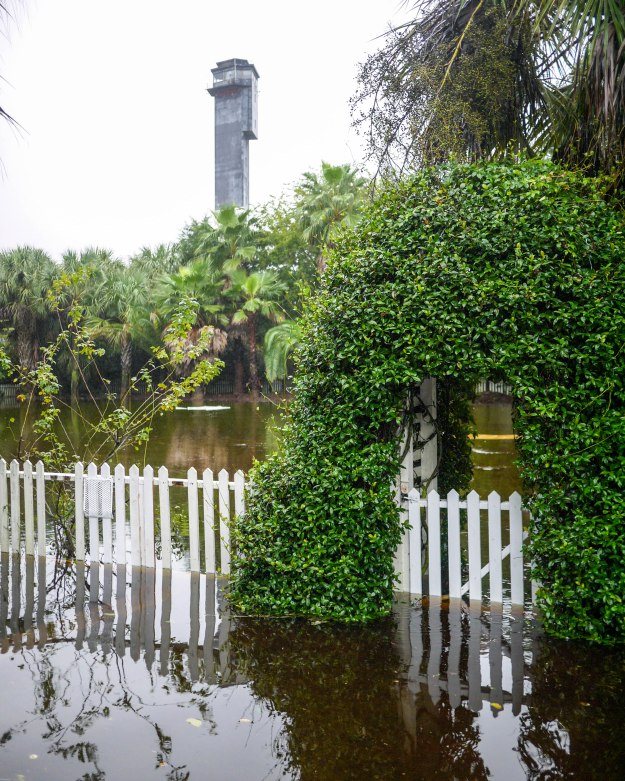 Hurricane Joaquin Sullivan's Island Station Back Yard Garden Flooded Picket Fence