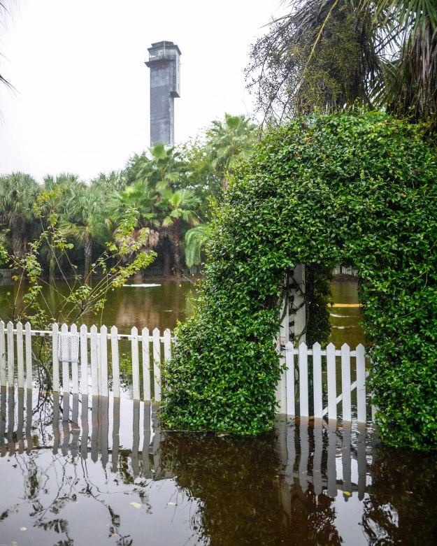 Hurricane Joaquin Sullivan's Island Station Back Yard Garden Flooded Picket Fence