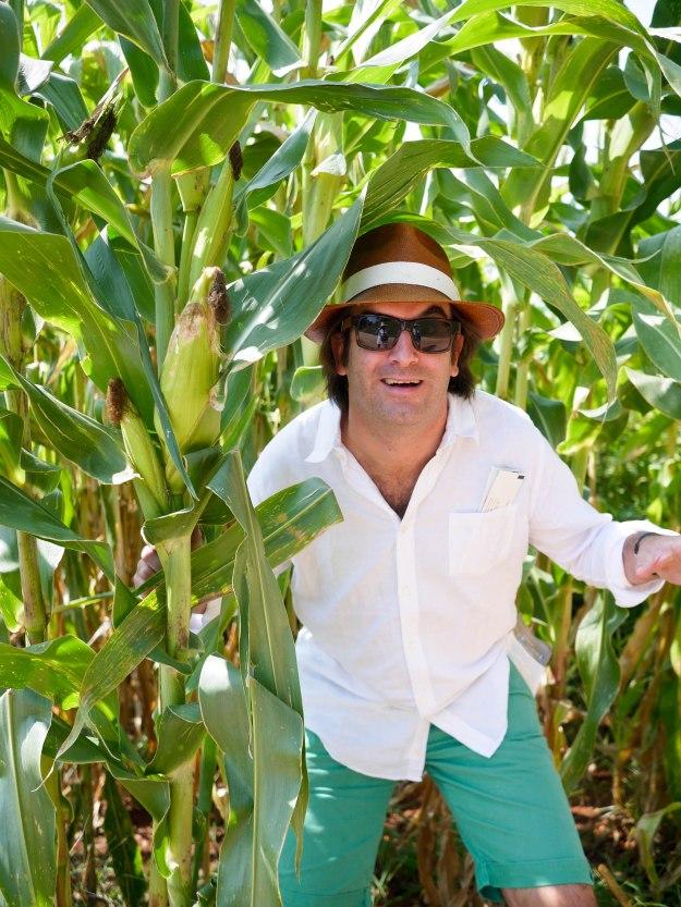 Monticello gardens corn