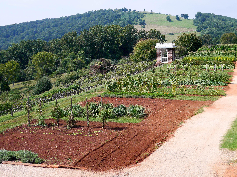 Monticello Gardens Hill Landscape