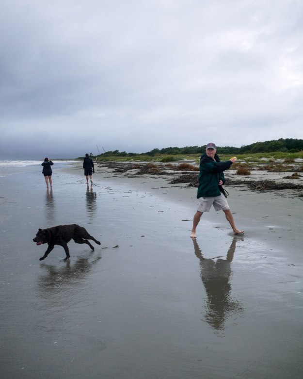 Hurricane Joaquin Sullivan's Island Flooding Beach Dog Catch