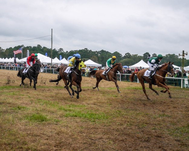 Charleston Cup 2015 Race Horses Flag