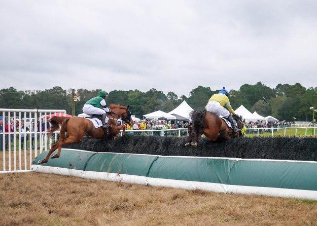 Charleston Cup 2015 Race Horses Jump