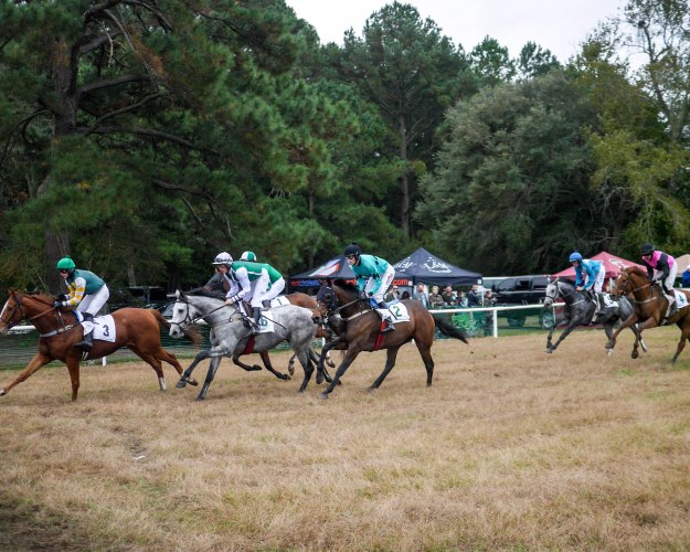 Charleston Cup 2015 Race Horses Race