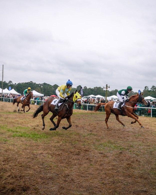 Charleston Cup 2015 Race Horses Start