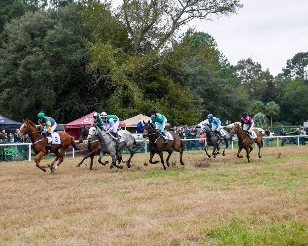 Charleston Cup 2015 Race Horses Track Run