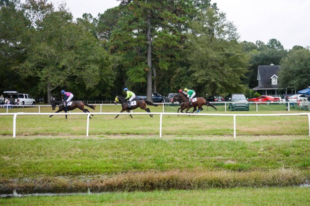 Charleston Cup 2015 Race Horses Track