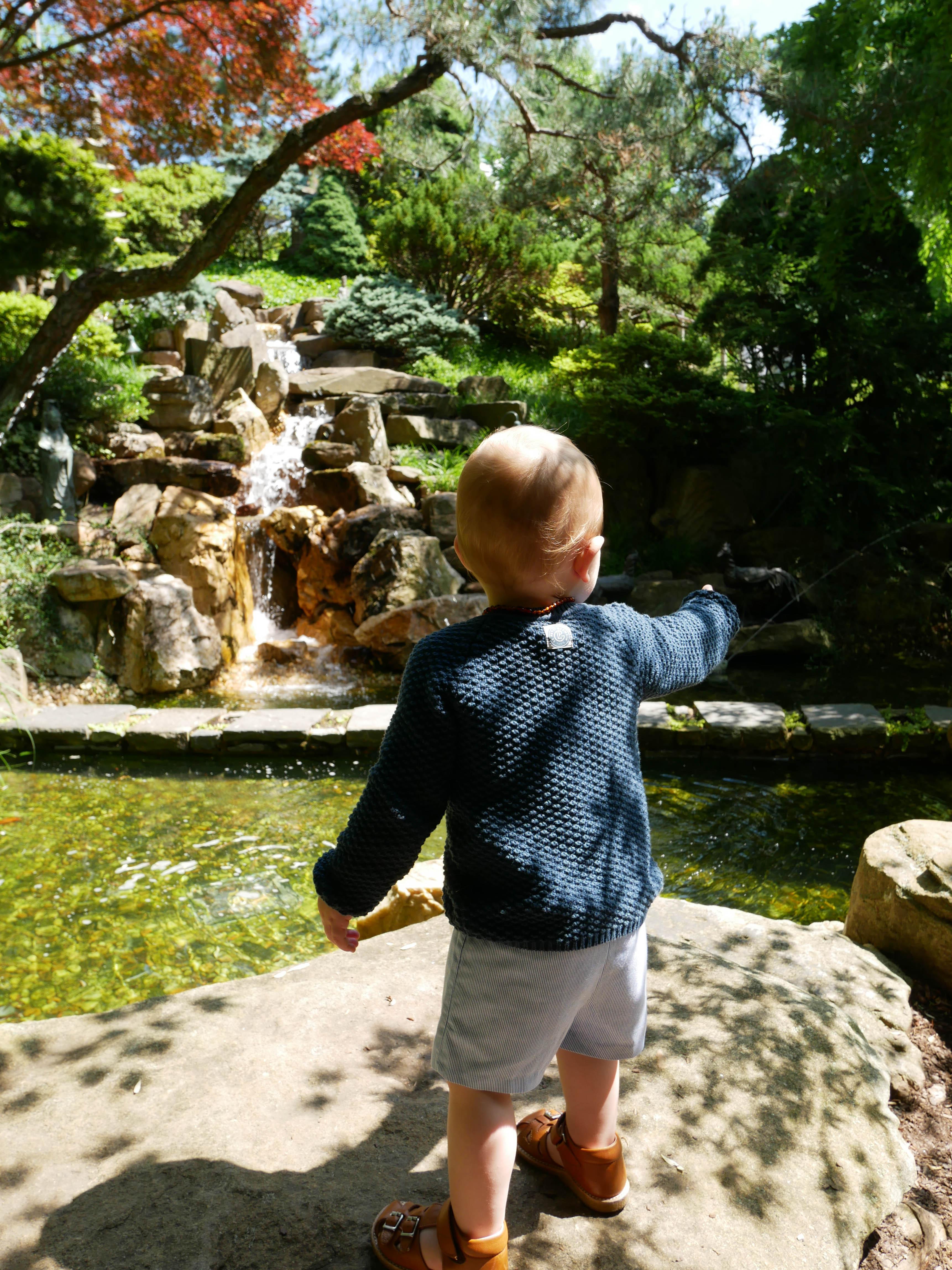 Hillwood Japanese garden waterfall
