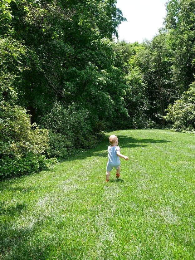 Hillwood lawn run
