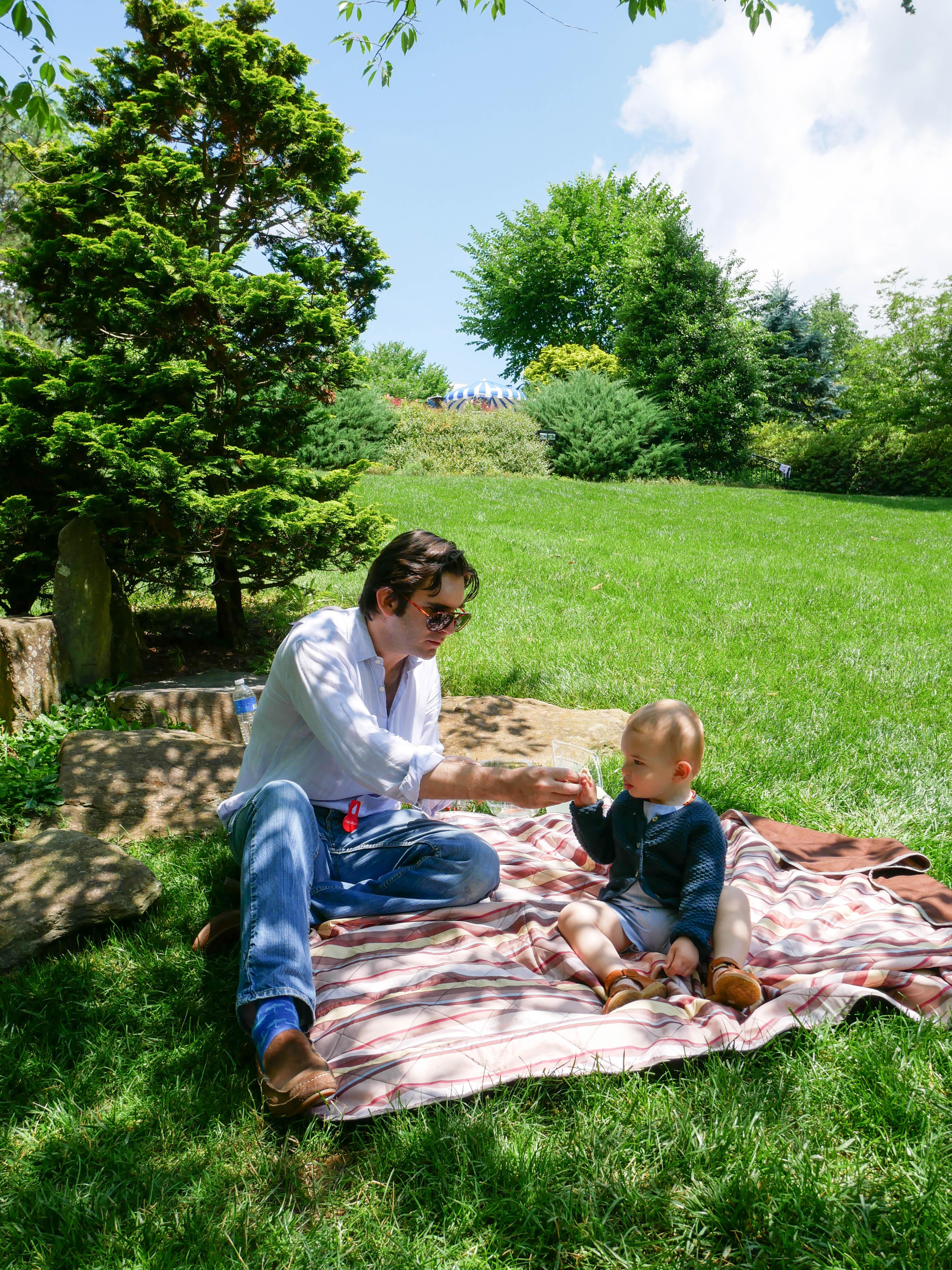 Hillwood picnic dada luc