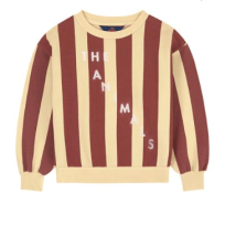 The Animals Observatory Striped Sweatshirt